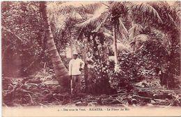 CPA Tahiti Iles Sous Le Vent Non Circulé La Pierre Du Roi RAIATEA - Polynésie Française