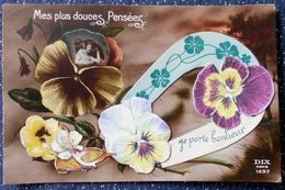 Photo COUPLE HOMME FEMME CATHERINE VALENTIN Dans Pensée Ajoutis Decoupis Collage Fer Et Fleurs Pensées - Saint-Valentin