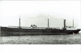 Steam Merchant Ship Photo SS Konakry British & African Steam Navigation Co - Boats