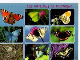 Les PAPILLONS De Montagne,Paon Du Jour,Citron,Aurore,Argus Bleu,ApollonVulcain,Isabelle,Sylvain,Machaon - Farfalle