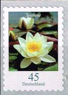 Bund 2018, Michel# 3376 ** Blumen: Seerose Selbstklebend Von Der Maxirolle, Self-adhesive - [7] Repubblica Federale