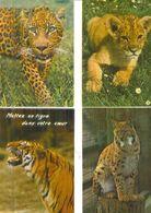 FELINS /  Lot De 45 Cartes Postales Modernes Neuves - Postcards