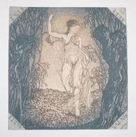 Ex-libris Moderne XXème Illustré -  Allemagne - Femme Nue Au Voile - LUDW. SAENG Par Hubert Willm - Ex-libris