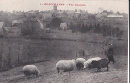 Carte 1910 BEAUCHAMPS / VUE GENERALE (moutons) - Frankreich