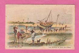 IMAGE LES HUITRES EN PARC  (Ile D'Oléron)  PECHE MARITIME - Vecchi Documenti