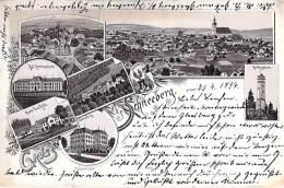 ÖSTERREICH Autriche ( Neunkirchen ) SCHNEEBERG : CPA Multivues Sépia Illustrée - Austria écrite 1896 - Neunkirchen