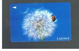 SINGAPORE -  1994   LADYBIRD - USED -   RIF. 10413 - Coccinelle