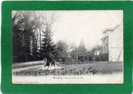 77 MOISENAY RUE DU PONT DU MEE ANIMATION  Assis Sur  Un Tas De Cailloux CPA Année 1905 - Other Municipalities