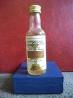 MIGNONNETTE WHISKY HAZELBURN 1825 1925 Old Scotch Mini Bottle Collection 5cl Pour 40% Distillé En Ecosse à Campbeltown - Miniatures