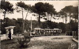 D33  CAP- FERRET  Le  Petit Tram Forestier Dans Une Allée Forestière  ..... - Arcachon