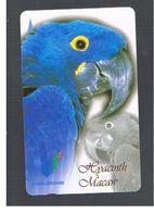 SINGAPORE -  1997 BIRDS: PARROT HYACINTH MACAW   - USED -   RIF. 10421 - Pappagalli