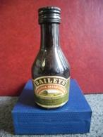 LOT 2 MIGNONNETTES CREME De WHISKY BAILEYS Irish Cream Dublin IRLANDE Old Mini Bottle Collection 5cl Pour 17% - Miniatures