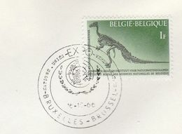 1966 BELGIUM UN EXPO EVENT COVER Stamps DINOSAUR Dinosaurs Prehistory Prehistoric United Nations - UNO