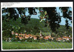 1978  --  VILLAGE DE MUHLBACH SUR MUNSTER   3P304 - Vieux Papiers