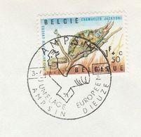 1966 BELGIUM EUROPEAN TWINNING EVENT COVER Ampsin Dieuze Stamps Chameleon - Belgium