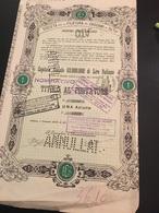 SOCIETA' PER LA FILATURA DEI CASCAMI DI SETA- UNA AZIONE-MILANO-1-1-1933 - Textile