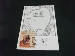 STORIA POSTALE  FRANCOBOLLO GUINE' BISSAU  CARTA GEOGRAFICA LAGO PATRIA   LAGOMARE 1993 GIUGLIANO IN CAMPANIA - Carte Geografiche