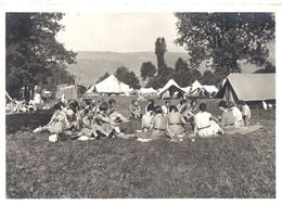 Fédération Des Eclaireuses Suisses - Au Camp - Bund Schweizerischer Pfadfinderinnen (carte 10 X 15 ) - Non Circulé - Padvinderij