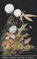 Alice Marshall Fairyland Fancies  Whats O'Clock ? Oilette   Ad483 - Illustrateurs & Photographes