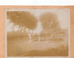 Juan Bautista Alberdi En Argentina 1903 - Gaucho - Familia Larrague ( De Pau ) Granja Francesa - Calèche Attelage - Lieux