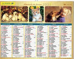 ALMANACH  DU FACTEUR  2003  EDITION   LAVIGNE  CHIEN CHATS TOURISME - Calendars