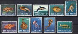 SAN MARINO 1966 - ANIMALI - FAUNA MARINA - PESCI - SERIE COMPLETA - MNH ** - Nuovi