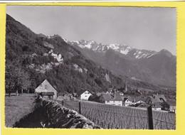 Vaduz Mit Schloss - Liechtenstein