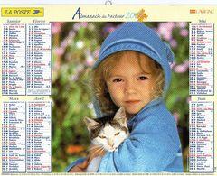 ALMANACH  DU FACTEUR  2007  EDITION   LAVIGNE ENFANT CHIEN CHAT - Calendars