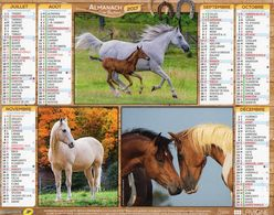 ALMANACH  DU FACTEUR  2017  EDITION   LAVIGNE NATURE  CHEEAUX - Calendars