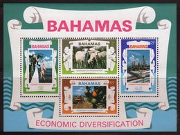 Bahamas 1975 Mini Sheet Celebrating Economic Diversification.  This Mini Sheet Is In Mounted Mint Condition. - Bahamas (1973-...)