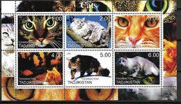 Tadjikistan 2000 Bloc Neuf Avec Chat - Chats Domestiques
