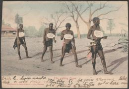 The Walking Craze, C.1905 - Sallo Epstein U/B Postcard - South Africa