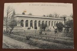 MONTPELLIER (34) - JARDIN DES PLANTES - LA GRANDE SERRE - Montpellier