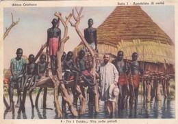 CARTOLINA - POSTCARD - SUDAN - AFRICA CRISTIANA - TRA I DENKA VITA NELLE PALUDI - Sudan
