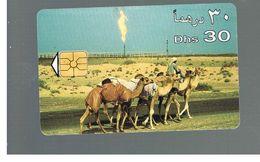 EMIRATI ARABI UNITI (UNITED ARAB EMIRATES) - 199 ANIMALS: CAMELS     - USED -  RIF.  10431 - United Arab Emirates