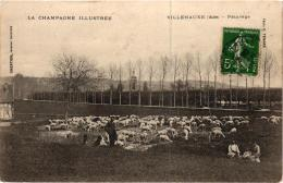 VILLENAUXE ;PATURAGE BERGER ET SES MOUTONS,JOLI PLAN ANIME REF 55771 - France