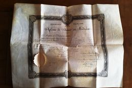 Diplome Docteur En Médecine 1906 - Diplomas Y Calificaciones Escolares