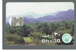 EMIRATI ARABI UNITI (UNITED ARAB EMIRATES)  -1996 PALM TREE GROVE - USED - RIF.  10442 - United Arab Emirates