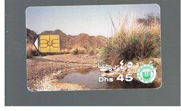 EMIRATI ARABI UNITI (UNITED ARAB EMIRATES)  -1995 WADI & HILLS - USED - RIF.  10443 - United Arab Emirates