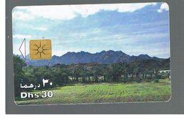 EMIRATI ARABI UNITI (UNITED ARAB EMIRATES)  -1998 PALMS & MOUNTAINS - USED - RIF.  10443 - United Arab Emirates