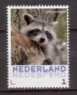 Nederland  Persoonlijke Zegel  Animal Wasbeer, Raccoon - Periode 2013-... (Willem-Alexander)