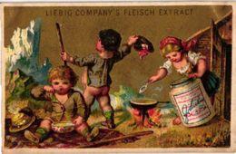 LIEBIG 0081 - S 8fe  - ARNOLD 20 - Genrebilder XII Fleisch Extract - Rare Card -montagna, In The Mountains MATTHEY Print - Liebig