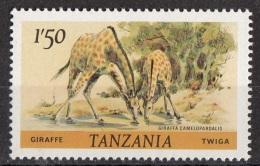 Tanzania 1980 Sc. 168 Mammiferi Giraffe Nuovo MNH - Tanzania (1964-...)