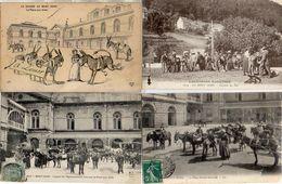 Collection Les ânes Du Mont-doré X 13 Cartes éditions Différentes Dont Loueur - La Bourboule