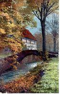 Photochromie - Ostermaier & Nenke - No 1335 -   Fluss - Brücke - Firma  - Fallen - Pont Sur Une Rivière - Ferme - Baum - Künstlerkarten
