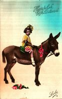 âne Donkey 17, Fantaisie 1 Enfant - Asino