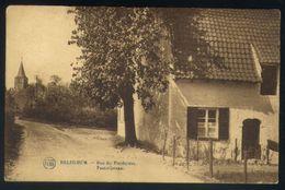 Z07 - Asse Relegem - Pastorijstraat / Rue De Presbytère - Gebruikt Brussel 1928 - Asse