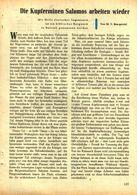 Die Kupferminen Salomos Arbeiten Wieder /Artikel, Entnommen Aus Kalender /1959 - Books, Magazines, Comics