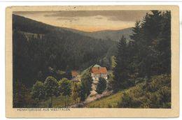 Germania  Heimatgrüsse Aus Westfalen Viaggiata 1924 - Germania