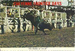 CHEYENNE  FRONTIER  DAYS    THE  DADDY  OF EM  ALL , ( Voir Verso ) - Cheyenne